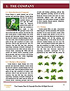0000086213 Word Template - Page 3