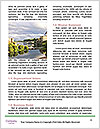 0000086216 Word Templates - Page 4