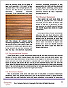 0000086221 Word Templates - Page 4