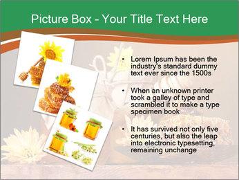 0000086229 PowerPoint Templates - Slide 17