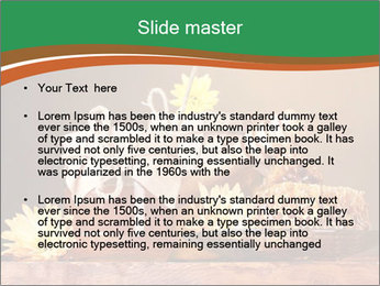 0000086229 PowerPoint Template - Slide 2