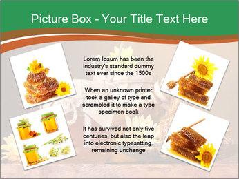 0000086229 PowerPoint Templates - Slide 24