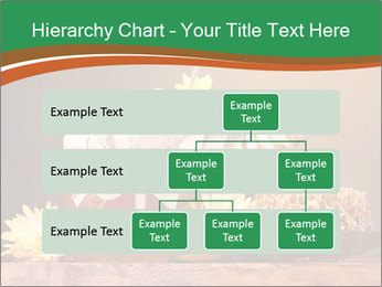 0000086229 PowerPoint Templates - Slide 67