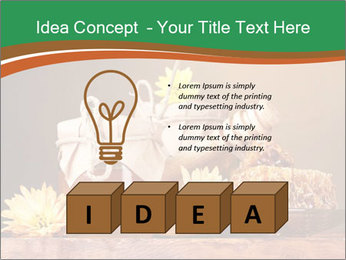 0000086229 PowerPoint Template - Slide 80