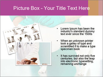 0000086230 PowerPoint Template - Slide 20