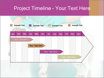 0000086230 PowerPoint Template - Slide 25