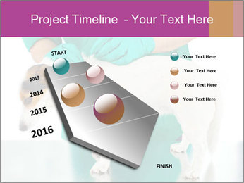 0000086230 PowerPoint Template - Slide 26