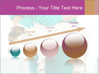 0000086230 PowerPoint Template - Slide 87