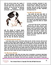 0000086230 Word Templates - Page 4