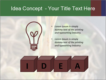 0000086248 PowerPoint Template - Slide 80