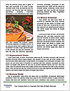 0000086248 Word Templates - Page 4