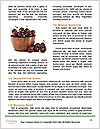 0000086255 Word Templates - Page 4
