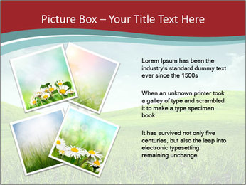 0000086259 PowerPoint Template - Slide 23