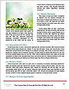 0000086259 Word Template - Page 4