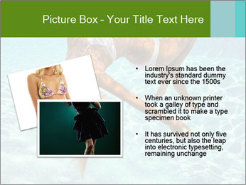 0000086261 PowerPoint Template - Slide 20