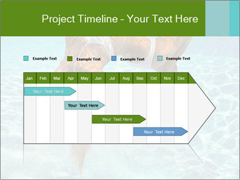 0000086261 PowerPoint Template - Slide 25