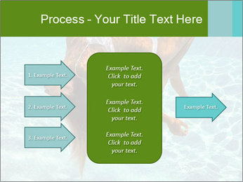 0000086261 PowerPoint Template - Slide 85