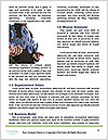 0000086263 Word Template - Page 4