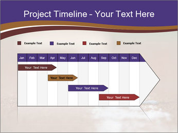 0000086265 PowerPoint Template - Slide 25