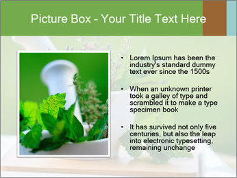 0000086270 PowerPoint Template - Slide 13