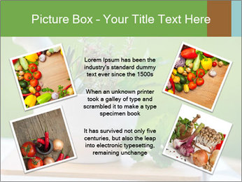 0000086270 PowerPoint Template - Slide 24