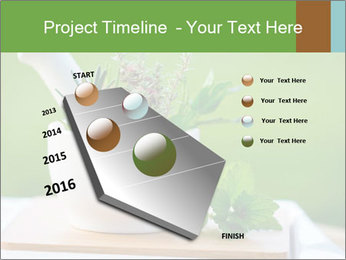 0000086270 PowerPoint Template - Slide 26