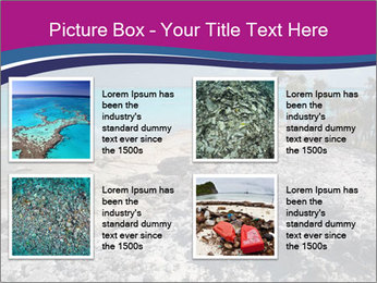 0000086273 PowerPoint Template - Slide 14