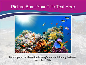 0000086273 PowerPoint Template - Slide 15
