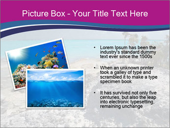 0000086273 PowerPoint Template - Slide 20