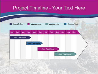 0000086273 PowerPoint Template - Slide 25