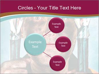 0000086279 PowerPoint Template - Slide 79