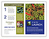 0000086294 Brochure Template