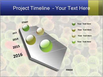 0000086294 PowerPoint Template - Slide 26