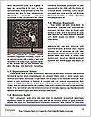 0000086297 Word Template - Page 4