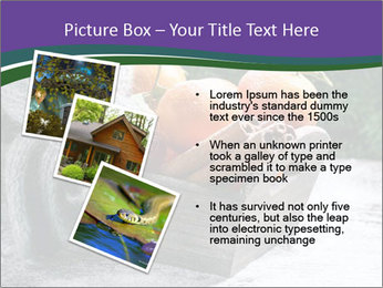 0000086310 PowerPoint Template - Slide 17