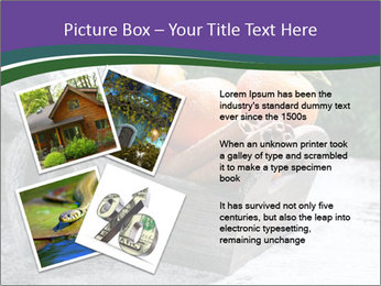 0000086310 PowerPoint Template - Slide 23