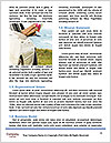 0000086327 Word Templates - Page 4