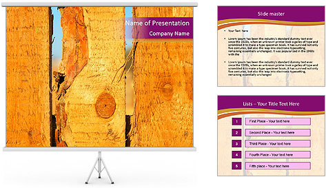 0000086337 PowerPoint Template