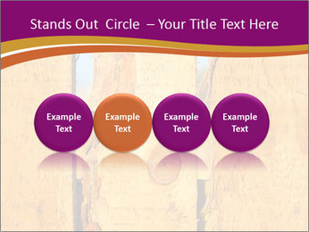 0000086337 PowerPoint Template - Slide 76