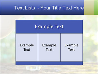 0000086342 PowerPoint Templates - Slide 59