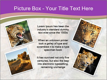 0000086343 PowerPoint Template - Slide 24
