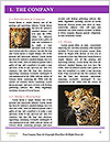 0000086343 Word Templates - Page 3