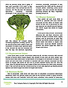 0000086355 Word Templates - Page 4