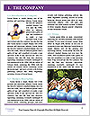 0000086361 Word Template - Page 3