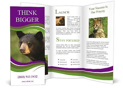 0000086367 Brochure Templates