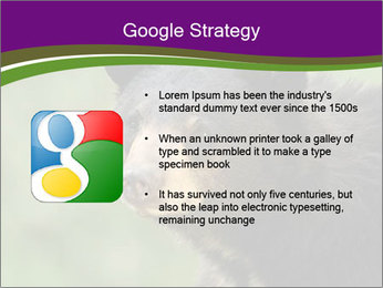 0000086367 PowerPoint Template - Slide 10