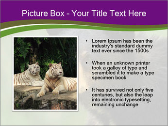 0000086367 PowerPoint Template - Slide 13