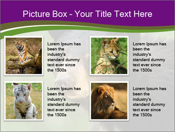 0000086367 PowerPoint Template - Slide 14