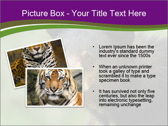 0000086367 PowerPoint Template - Slide 20
