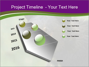 0000086367 PowerPoint Template - Slide 26